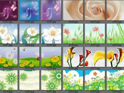 decorative picture order list 02#